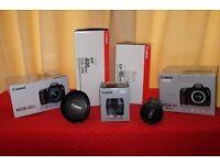 Canon DSLR's and Canon lenses