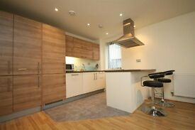 Two Bedroom Modern Apartment to Rent - E17