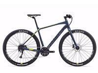 Giant Toughroad SLR 2 - Large Hybrid / Road bike / Mountain Bike