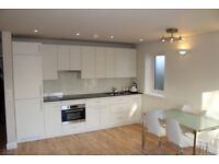 BRAND NEW 1 BEDROOM GROUND FLAT IN SOUTH WOODFORD ROYCROFT CLOSE, E18 1DZ