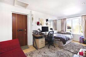 Studio flat near Excel, City Airport, UEL, O2