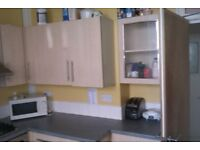 Bright, spacious furnished room in huge apartment close to town centre and seafront
