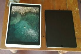 Apple ipad pro, 2nd gen, 256bg