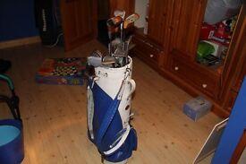 12 vintage golf clubs, including bag.