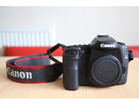 Canon 40D DSLR with 18-55mm lens