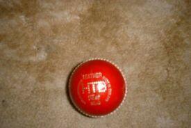 Cricket balls NEW