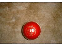 Cricket balls NEW