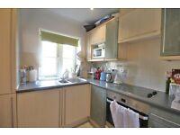 SPACIOUS 2 BEDROOM APARTMENT MINUTES FROM ANGEL TUBE