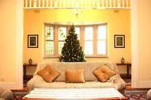 Lovely Sunny Room in Carnegie/ Glenhuntly area Carnegie Glen Eira Area Preview