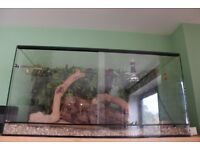 Snake/reptile tank plus all accessories, EVERYTHING YOU NEED TO GET STARTED - excellent condition