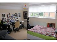 Lovely Spacious Room for Short-Term Let (27 July - 20Aug)