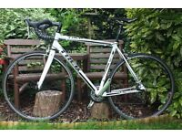 SUPERB UPGRADED, LOVELY CONDITION Trek 1.5 Road Racing Racer Bike (like Specialized/Cannondale/BMC)