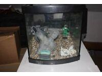 fish tank plus filters etc