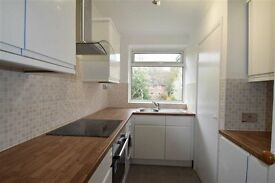 Spacious newly refurbished apartment off Wimbledon Hill with parking - Private Let