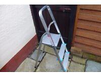 Small domestic ladder