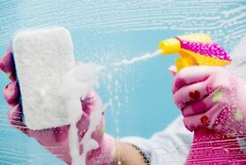 Domestic Cleaning Services to suit all budgets.