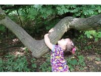 Show Me Montessori Nursery