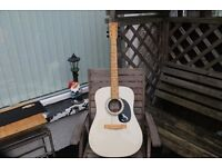 THE ML - SEAGULL ACOUSTIC GUITAR WITH A NEW SET OF STRINGS JUST FITTED. LOW ACTION EASY TO PLAY