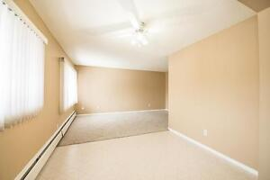 Amazing 2 bedroom Apartment! Pay only $675.00 for the first year Edmonton Edmonton Area image 7