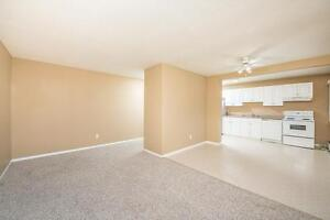 Amazing 2 bedroom Apartment! Pay only $675.00 for the first year Edmonton Edmonton Area image 6