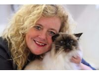EXPERT CAT SITTER - WIRRAL AREA