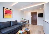 BRAND NEW LUXURY FLAT / IN A LUXURY DEVELOPMENT / ON SITE GYM / PORTER / ROOF TERRACE /FULLY FURNIS.