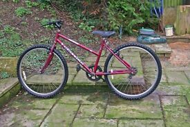 Girls bicycle for around 8 ton 12 years age