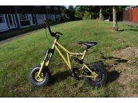 Mini rig kids bike