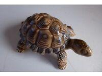Wade tortoise trinket box