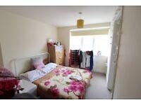 Modern 1 Bedroom Flat in Charminster