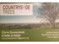 Countryside trees qualified tree surgeons