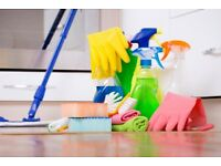 Whistles Cleaning Service