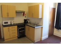 1 BEDROOM STUDIO FLAT LOCATED IN ASHBROOKE IN SUNDERLAND. AVAILABLE NOW
