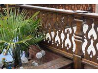 Garden design &Garden maintenance
