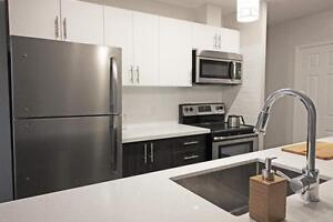 Maple Bay Apartments: Apartment for rent in Downtown Burlington