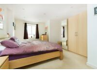 Large 1 double bedroom with communal roof terrace close to Elephant & Castle underground station