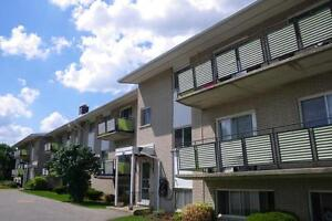 295 Home Street - One Bedroom Apartment Apartment for Rent Stratford Kitchener Area image 3