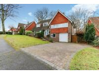 **Professional Sharers Welcome**Substantial Property**Premier Location**4 Beds**Close to Epsom**