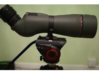 Spotting scope and digiscoping kit