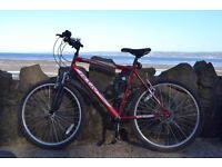 Mountain/City Bike in Excellent Condition for £100.00 only