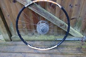 Rear 29er MTB Wheel - Sunn Ringle INferno