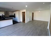 NEW & FULLY RENOVATED 6 bedrooms House with 3 Toilets and 2 Bathrooms & Driveway --Clayhall, Ilford