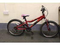 Garyfisher Cosmo Mountain Bike