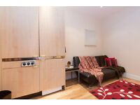 ~~~~~LARGE STUDIO NEXT TO HYDE PARK ~~~~ALL INCLUSIVE~~~~