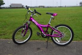 Giant Taffy Young Person's Mountain Bike