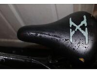 X-RATED mountain bike (Bike cycle)