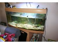 MARINE FISH TANK ON STAND 4FT LONG ALL FILTERS ETC INCLUDED