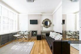 Studio flat in Meriden Court, London, SW3 (#1075466)