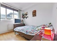 2 beds flat in trendy HAGGERSTON- HOXTON available in January (hackney, shoreditch, dalston)