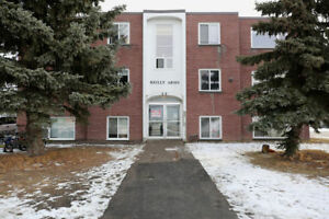 One Bedroom at 29 Sheppard Street FOR RENT!!!